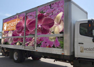 Westerlay Orchids Truck Wrap